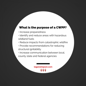 environmental planning firm CWPP purpose