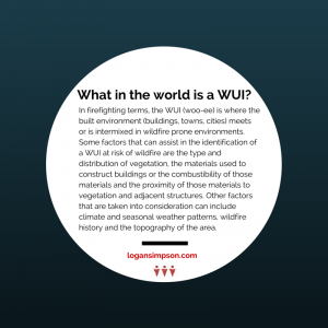 environmental planning firm what is WUI